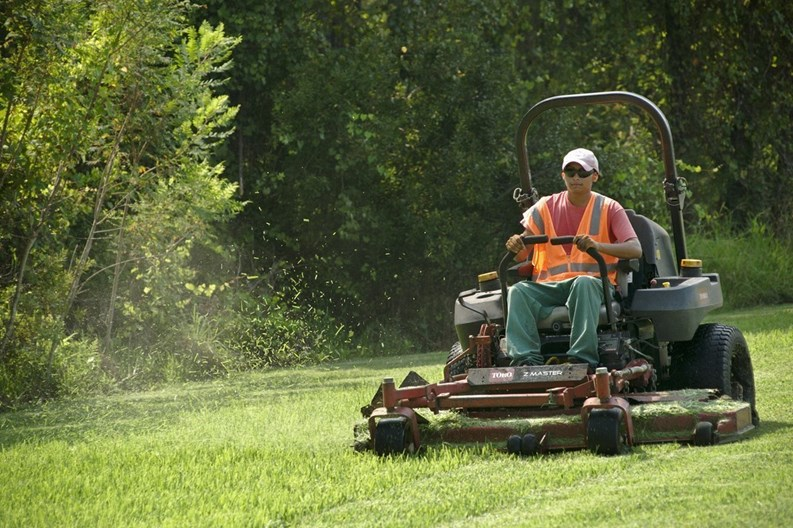 New England Is Not Exactly Known For Year Round Sunshine And Palm Trees Swaying In The Breeze At First Glance Greenery Lawns Lawn Care