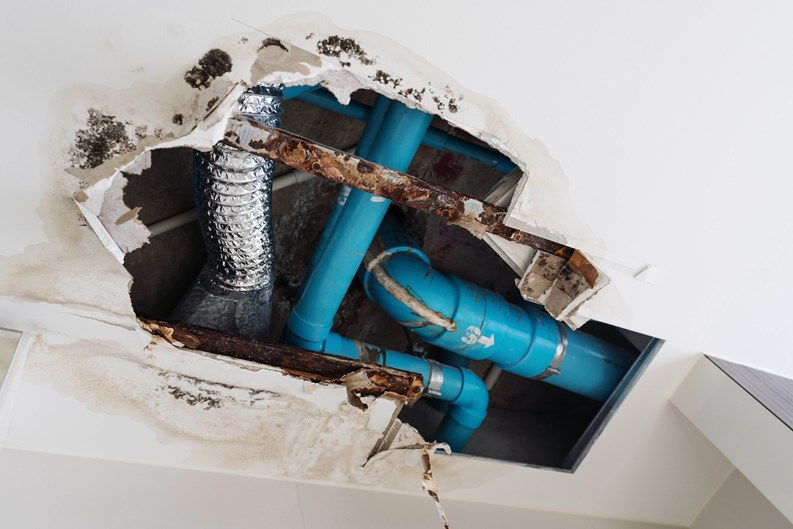 Identifying and Dealing With Plumbing Issues - Silencing